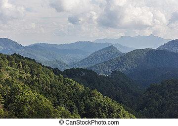 View doi luang chiangdoa form Loa Woo, Whianghaeng Chiangmai...