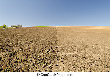 Plowed field in spring time with blue sky