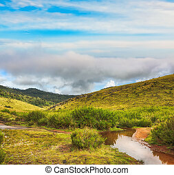 The Horton Plains - Beautiful view of The Horton Plains