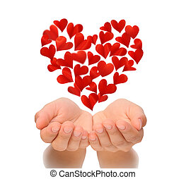 Hearts in heart shape flying over cupped hands of young woman, Valentine's Day, Happy Valentines day, love concept, isolated on white background, birthday card, health insurance concept