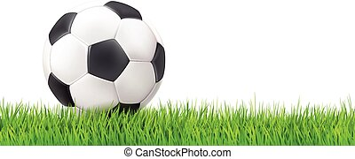Soccer ball grass background - Soccer ball grass white...