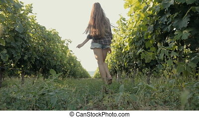 Beautiful girl walking along the rows of of the vineyard