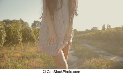 Girl in a light airy dress in the vineyards - Girl in a...