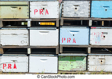 Closeup of Beehives - Closeup view of beehives in Buffalo,...