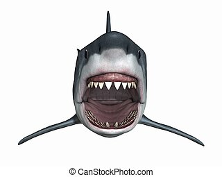 Great White Shark - 3D Render of an Great White Shark