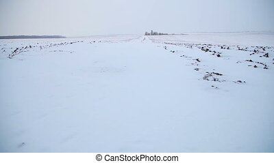 Melting  snow on the plowed field