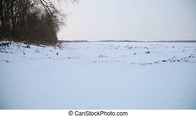 Snowy winter plowed field