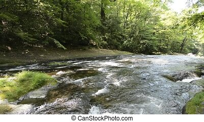 Shallow river flowing in various directions in front of...