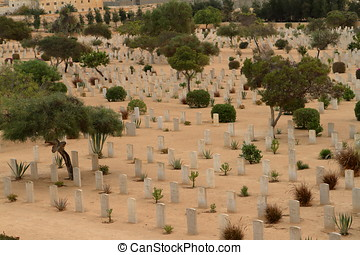 Commonwealth war cemetery in Egypt - Commonwealth war...