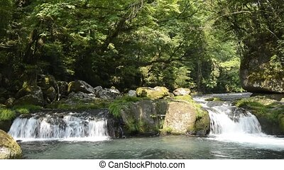 River over rock step - River flowing divided into two over...