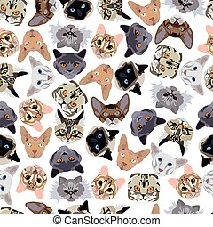 flat seamless pattern pedigree cats in vector format eps10