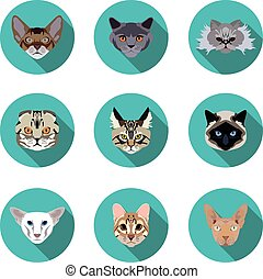 flat icons set of pedigreed cats  in vector format eps10