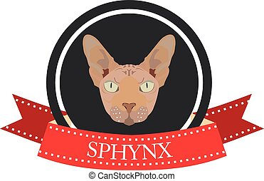 Sphynx Stock Illustrations 206 Sphynx Clip Art Images And
