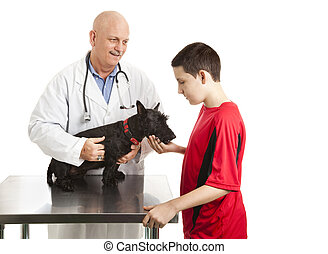 Vet Cares For Teens Dog