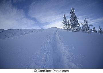 snow trail mountain