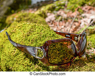 Upsidedown Sunglasses on Mossy Rock - Brown square shaped...