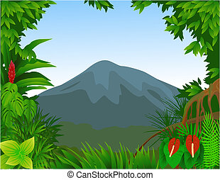 Forest - Tropical forest