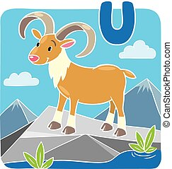 Funny wild urial or ram Alphabeth U - Children vector...