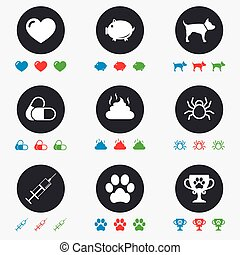 Veterinary, pets icons Dog paw, syringe signs - Veterinary,...