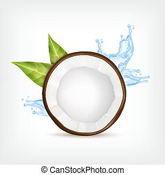Coconut with green leaves and blue water splash. Vector...