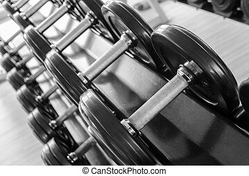 Set of Fixed-weight dumbbells in the gym Weight training...