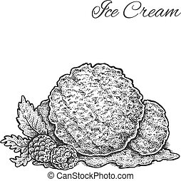 ice cream with raspberries - Black and white vintage sketchy...