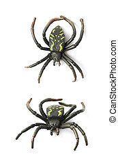 Fake rubber spider toy isolated over the white background,...
