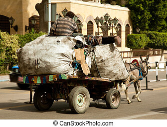 Zabbaleen trash collectors on horse and cart - Cairo street...