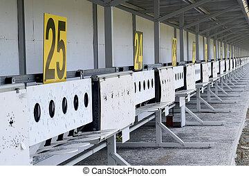Biathlon . Target sports shooting