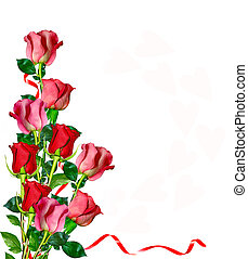 flowers rose isolated on white background holiday card