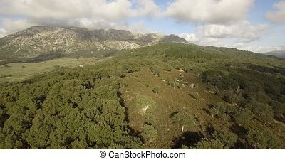 4K Aerial, Flight over trees, forests and hills, Andalusia,...