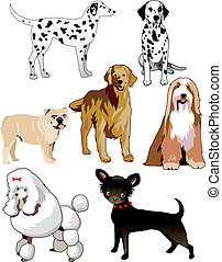 Dogs - Vector Illustration of 7 dogs or puppies isolated.