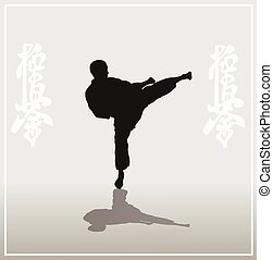 Illustration, the man showing karate on a light background.