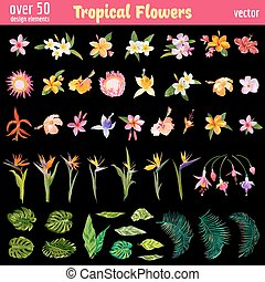 Tropical Flowers Deisgn Elements Set - Vintage Colorful...