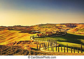 Tuscany, Crete Senesi rural sunset landscape. Countryside...