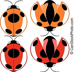 Beetle illustration - Beetle red and yellow fly cartoon...