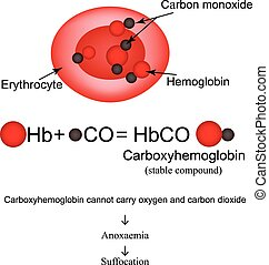 Carboxyhemoglobin Joining the hemoglobin carbon monoxide...