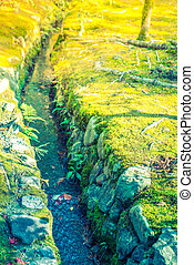 River water flowing past stones in green moss Filtered image...