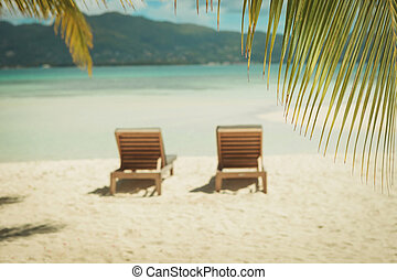 picture of two sunbeds on the beach, under the palm trees -...
