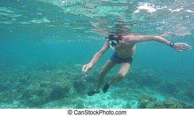 Man scuba diver in tropical sea - Male scuba diver holding a...