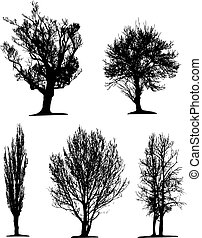 Black tree silhouettes