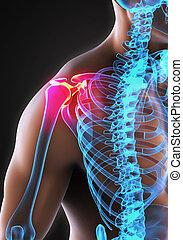 Painful Shoulder Illustration