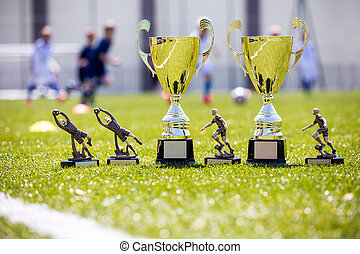 Soccer championship gold trophies on shinny green grass....