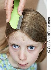 tête, pou, traitement, et, prévention,