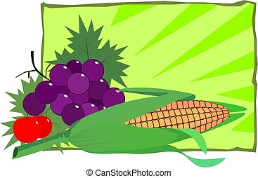 Maize - Illustration of grapes, berries and Maize in green...