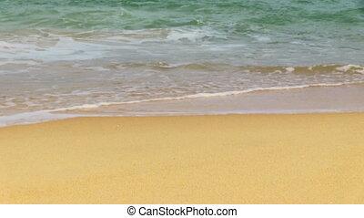 Man Going On The Tropical beach