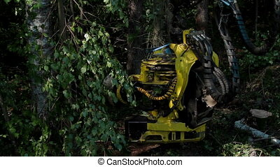 Specialized Feller Buncher saws chopped tree trunk -...