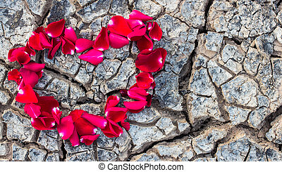 Heart shaped rose petals on dry ground