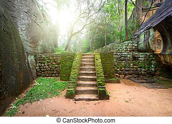 Staircase on Sigiriya - Ancient staircase, covered with moss...