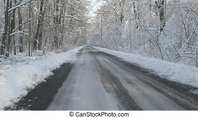 Walking through the winter forest - Walking on a road in the...